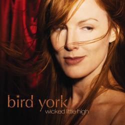bird york -