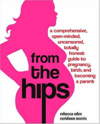 Rebecca Odes: From the Hips: A Comprehensive, Open-Minded, Uncensored, Totally Honest Guide to Pregnancy, Birth, and Becoming a Parent