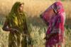 India inheritance