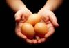 Eggdonation