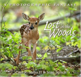 Carl R. Sams: Lost In The Woods: A Photographic Fantasy