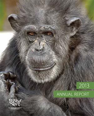 HSUS Annual Report 2013