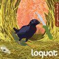 Loquat - Swingset Chain