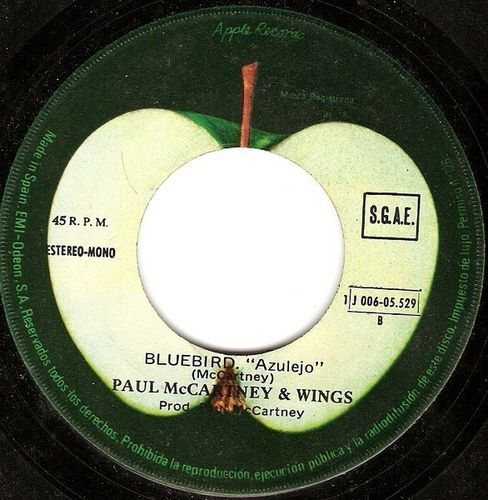 Paul McCartney - BlueBird