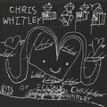 11-Chris Whitley - Narcotic Prayer