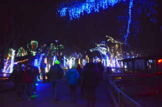 Visitors enjoy Columbus Zoo lights