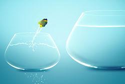Fish-getting-unstuck
