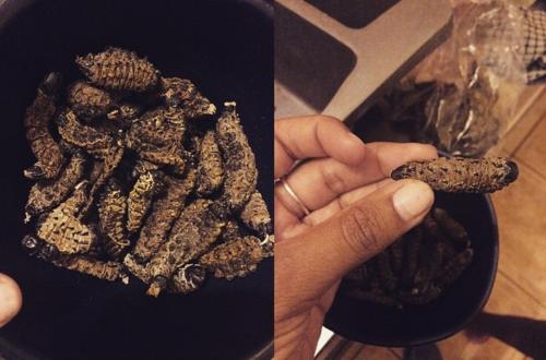 Mpoane worms