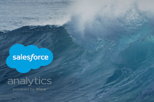 "Wave: ""Analytics for the Rest of Us"""