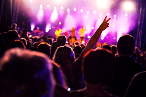 ATTRACTIONS_CONCERT_Crowds-of-people-having-fun-at-a-concert