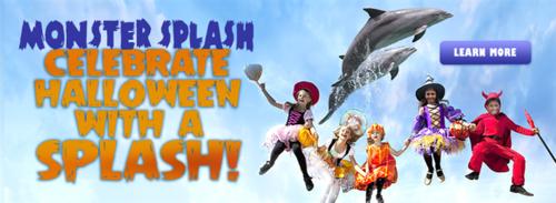 Miami Seaquarium Monster Splash