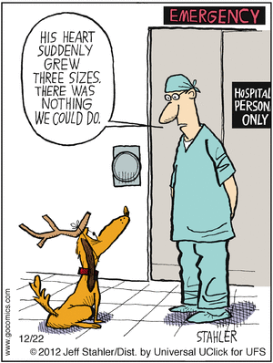Moderately Confused by Jeff Stahler