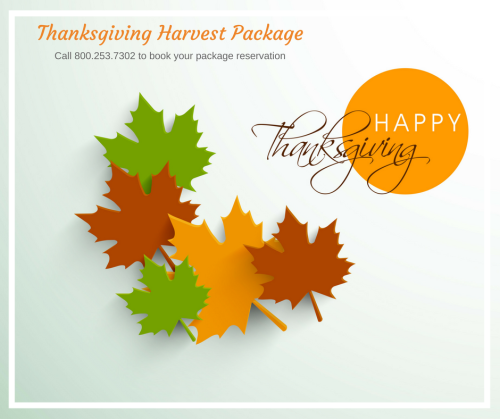 Thanksgiving-harvest-package