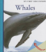 Ute Fuhr: Whales (My First Discoveries)