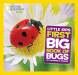 Catherine D. Hughes: National Geographic Little Kids First Big Book of Bugs
