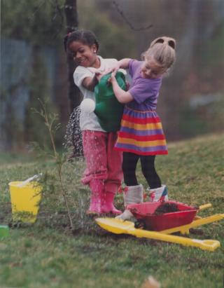 Children watering a tree