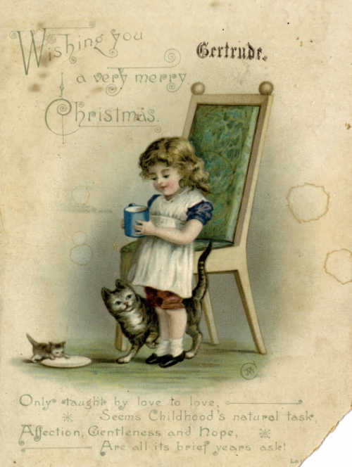 A young girl with a mug stands by a chair and two cats  one of them is drinking from a plate