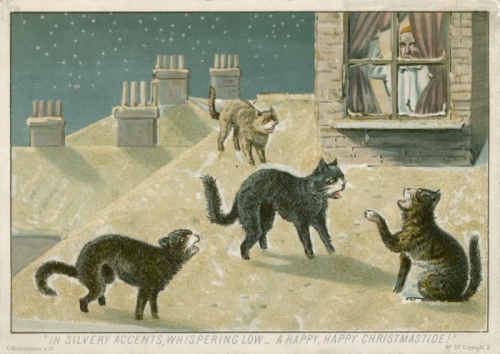 Four cats hiss on top of a snowy roof while a man peeks out from the window